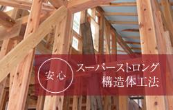 安心 スーパーストロング構造体工法